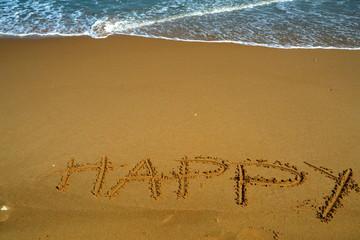 haapiness on the beach