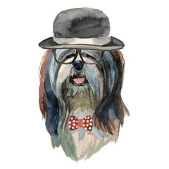 Lhasa apso dog - watercolor realistic isolated hipster dog portrait