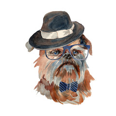 Brussels griffon dog - hand painted, isolated on white background watercolor hipster dog portrait