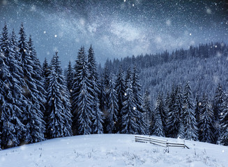Dairy Star Trek in the winter woods. Mysterious winter landscape majestic mountains in winter
