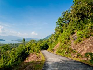 An asphalt road into the jungle.