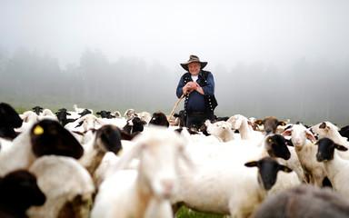 Shepherd Dietmar Weckback stands amongst his flock of sheep outside his farm in Ehrenberg