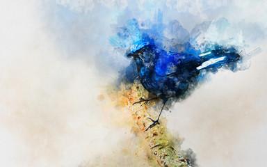 Blue watercolor birds backgorund