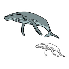 doodle whale vector illustration sketch doodle hand drawn with black lines isolated on white background