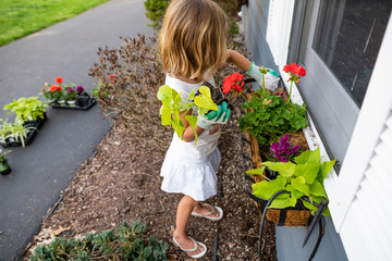 Girl planting flowers in backyard