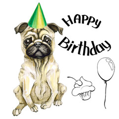 The dog breeds a pug in the cap. The inscription is happy birthday, balloon and cake. isolated on a fringe background