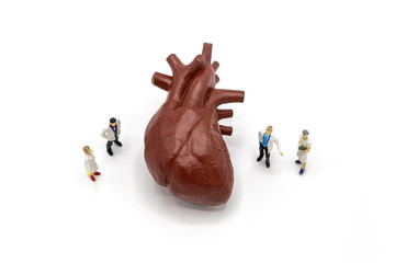 """Miniature doctor and nurse """"team specialists"""" observing and discussing about human heart, Science and Medical Concept"""