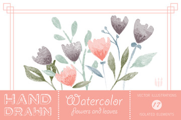 hand drawn watercolor flowers and leaves vector illustrations