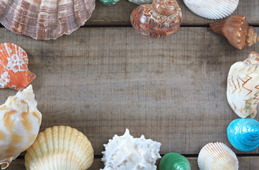 Topview frame create from sea shell on wood plate.