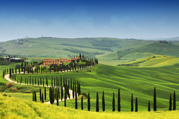 Wall Mural - Summer landscape in Tuscany, Italy, Europe