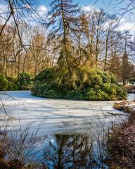 Enjoying a frozen lake at the Ohlsdorf cemetery
