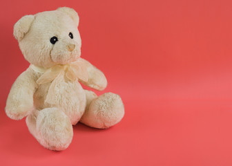 Toy soft teddy on the pastel colorful background. Gift concept.Copy space.