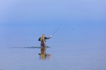 Angler walking in the blue calm sea trying to catch trout at Aleklinta on the island Oland, Sweden