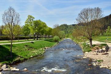 Dreisam in Freiburg im Frühjahr