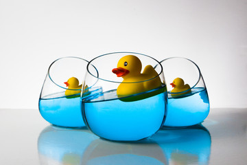 quirky ducky 3