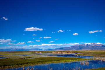 Wide-angle view of the beautiful marsh in Alamosa National Wildlife Refuge, showing Blanca Mountain, which is part of the Sangre de Cristo range of the Rocky Mountains in southern Colorado