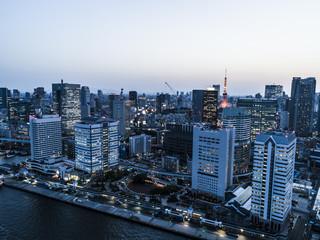 ライトアップされた東京タワーとビル群