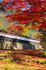 秋の福満虚空蔵尊円蔵寺(福島県・柳津町)
