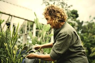 Woman gardening in her greenhouse