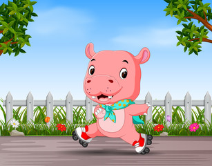 funny hippo playing roller skate in the road