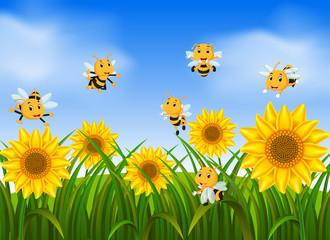 Bees flying in sunflower garden
