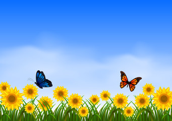 Two butterfly flying in sunflower garden