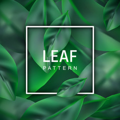 Leaf Vector Realistic Background