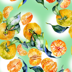 Southern, tasty, aromatic, fitrant mandarins and honey, rustic, wild bees Watercolor. illustration