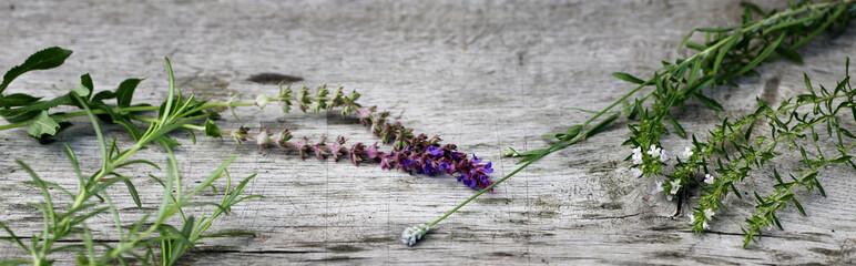 Spoed Foto op Canvas Kruiderij Gartenkräuter auf Holz