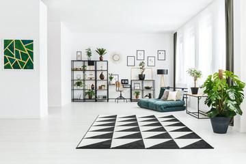 Plant in spacious apartment interior