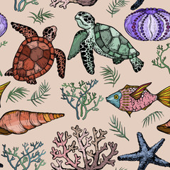 Seamless pattern with Ocean life organisms, shells, fish, corals, and turtle.