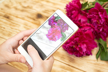 Woman hands taking photo on a phone of red peonies on a rustic background