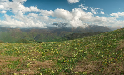 the tops of mountain ranges in the snow and covered by clouds in the summer on a sunny day with meadows and mountain slopes overgrown with trees, the Karachay-Cherkess Republic, the Caucasus