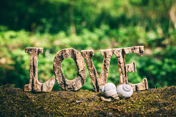 A couple of snails and LOVE writing standing on the wooden trunk.