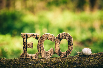ECO writing made from wooden letters and a snail