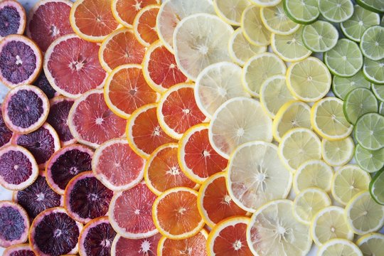 Close up of citrus fruit slices in rows
