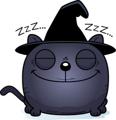 Cartoon Witch Cat Napping