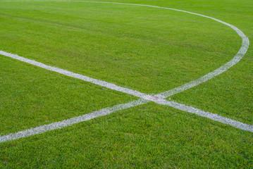 Soccer field or football field background.
