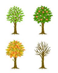Four seasons on a white background