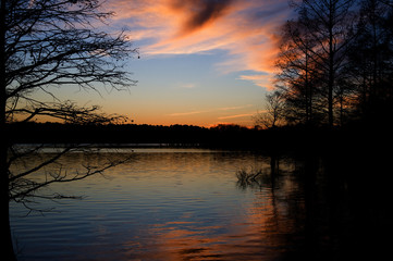 Stumpy Lake Sunset with Trees