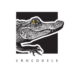 Vector graphic image of American alligator. Black and white illustration of crocodilian reptile, logotype, clipart in engraving style, design element for logo or template.