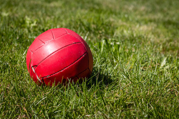 Red ball on green lawn in yard
