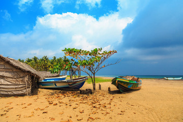 fishery, fishing wooden boats on the tropical coast