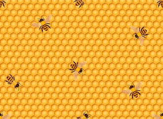 Honeycomb seamless background with bees. Vector illustration.