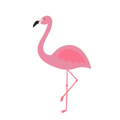 pink flamingo tropical exotic bird summer icon vector