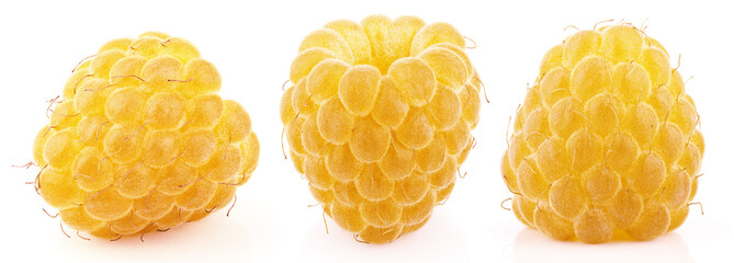 Set of single yellow raspberry berry fruits isolated on white background