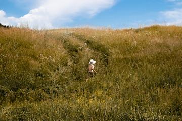 Shirtless boy walking amidst grassy field