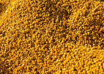 Bee pollen as healthy organic raw food ingredient