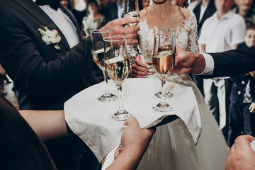 glasses of champagne on tray, hands holding glasses and toasting, celebrating wedding. stylish happy newlyweds with family cheering. space for text. luxury wedding reception.