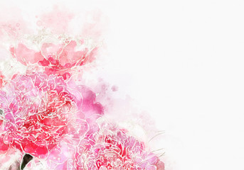 Roses flowers watercolor painting illustration